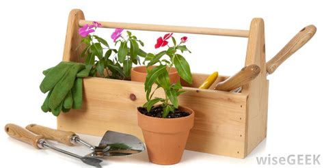 backyard supplies what does it mean to have a green thumb with pictures
