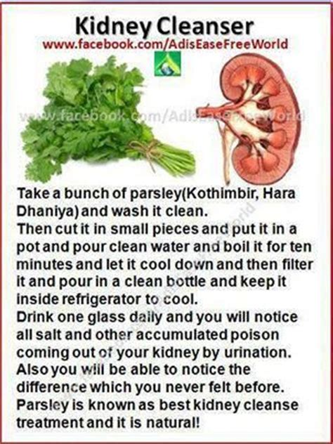 Kidney Detox Water by Sweet Corn Health And Ideas On