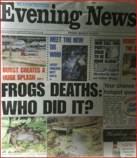 the evening news newspaper jon slattery local news shock is frog up there with dead fish and custard shortage