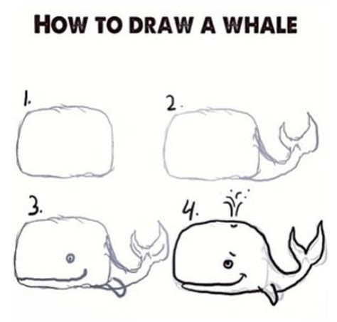 doodle drawings what do they how to draw a whale diy whales kid and