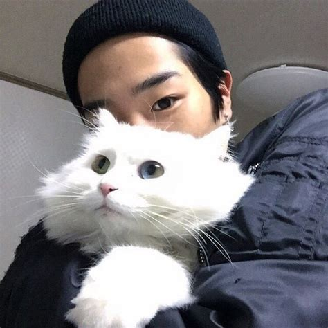 Boy Cutie Cat asian asian fashion beautiful boy cat image 3949437