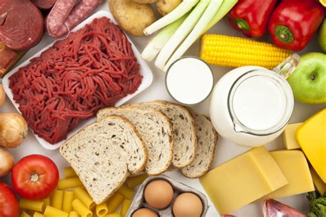 proteinas y grasas la digesti 243 n de carbohidratos grasas y prote 237 nas