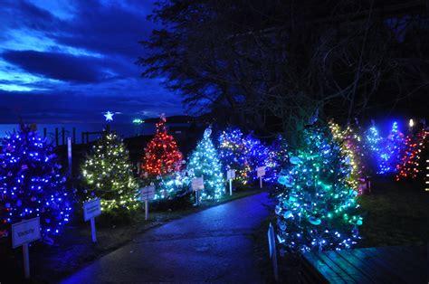 dundarave festival of lights 2015 west vancouver west