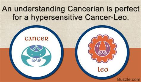 25 best ideas about cancer leo cusp on pinterest aries
