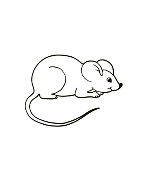 Coloring Page Mouse by Free Printable Mouse Coloring Pages For
