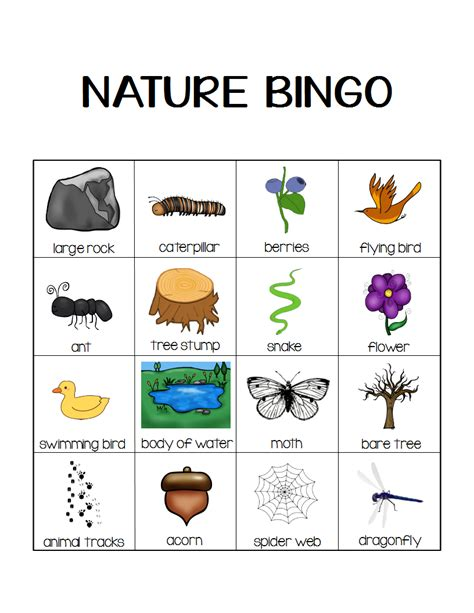 kindergarten activities nature nature bingo printable activity take a hike with your