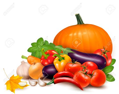 vegetable clip vegetable clipart nutritious food pencil and in color