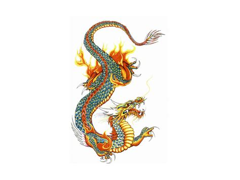 japan dragon tattoos clipart best