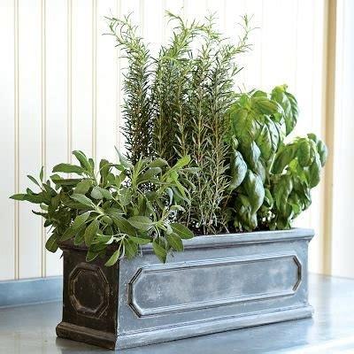 herb window box indoor top 25 ideas about indoor herb planters on pinterest