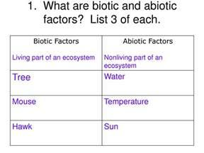 biotic and abiotic factors worksheet virallyapp