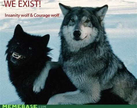 Wolf Meme - funny wolf meme www pixshark com images galleries with