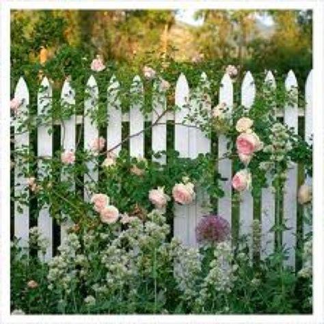 cottage garden fence white picket fence cottage garden