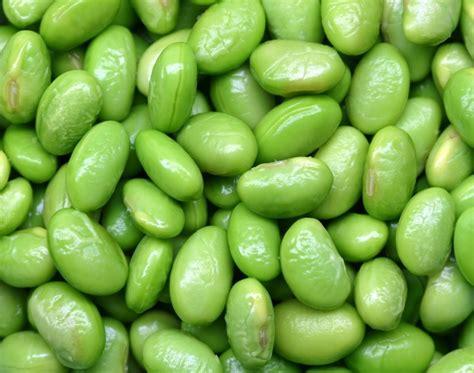come cucinare soia verde come cucinare la soia verde dalle mille propriet 224