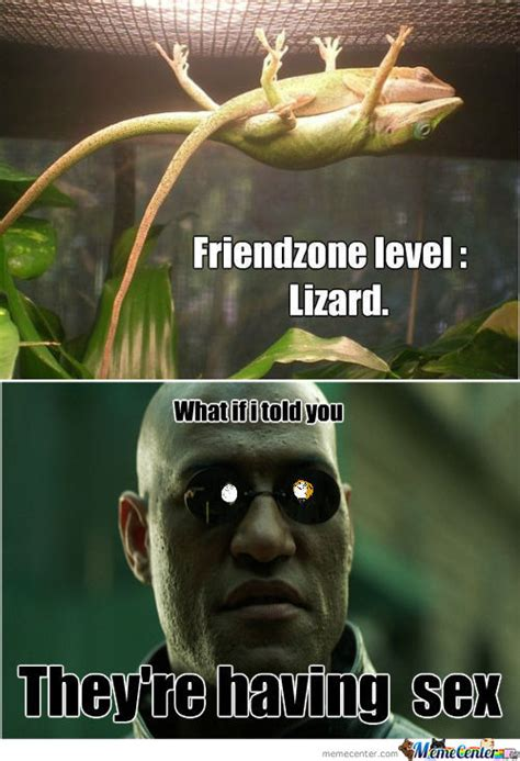 Lizard Meme - lizard people meme pictures to pin on pinterest pinsdaddy