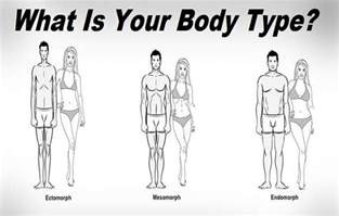 what is your type ectomorph or mesomorph or endomorph