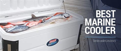 best marine cooler find the right ice chest for your - Best Boat Cooler