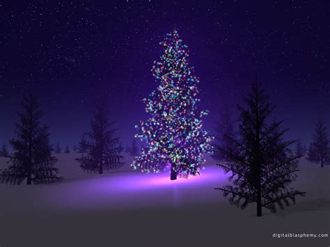 northern lights trading co upcoming events christmas eve