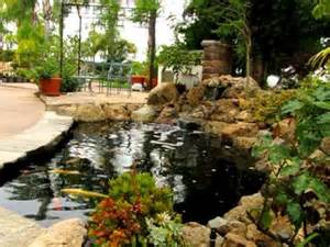 Patio Waterfalls Ideas Natural Rock Waterfall And Koi Pond With Disappearing Edge