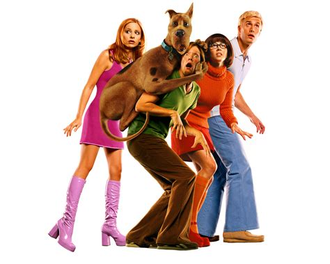 what of was scooby doo scooby doo images scooby doo hd wallpaper and background photos 25191441