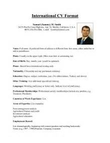 international resume template how to craft a cv that works internationally