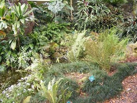Waimea Arboretum And Botanical Garden Flowers From The Garden Picture Of Waimea Arboretum And Botanical Garden Oahu Tripadvisor