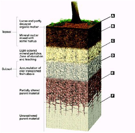 soil horizons diagram soil profile diagram