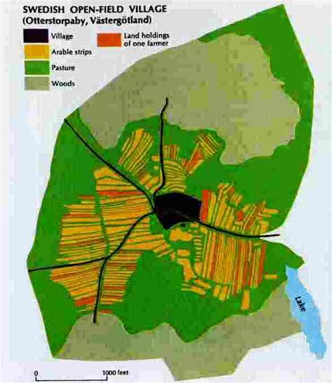 Of Swedish Open Field Village Of Peasant Status And Early