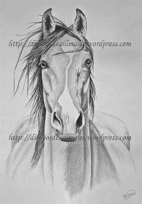 caballo a lapiz dibujos de animales dibujos a l 225 piz de caballos dibujos a lapiz