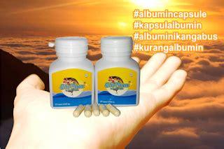 Chalbumin Kapsul Albumin Ikan Gabus Probiotik Albumin albumin kapsul dari ikan gabus bogo kutuk biochan capsule