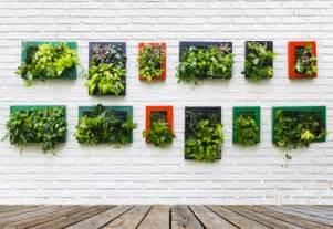 Vertical Garden Design Diy Creating A Diy Vertical Garden From Household Items