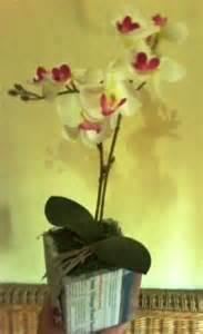 Daun Imitasi Tiruan Mainan 1 Lusin april 2013 seni merangkai bunga plastik
