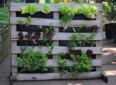 Vertical Vegetable Garden Ideas Vertical Vegetable Garden Ideas Corner