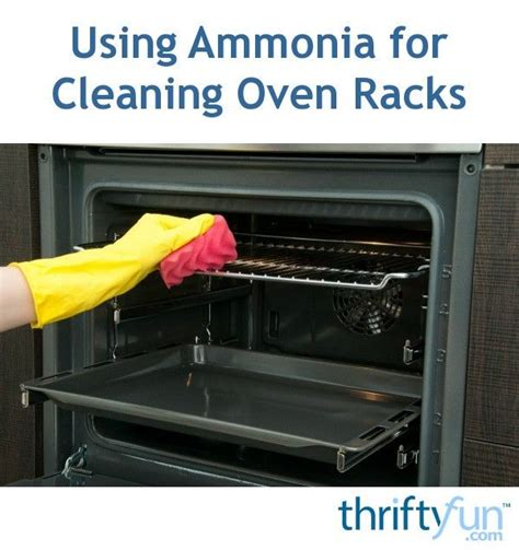 Cleaning Oven Racks With Ammonia by Best 25 Cleaning Oven With Ammonia Ideas On
