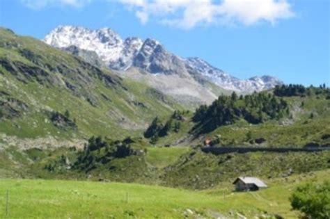 paesaggi di fiori bei paesaggi di montagna fiori e cascate foto di