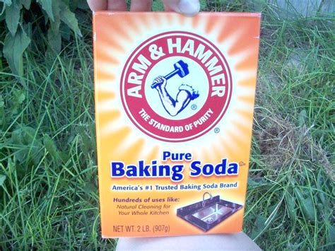 killing crabgrass with baking soda gardening pt v diy insecticides herbicides
