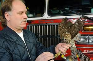 queens firefighter and wildlife rehabber may have to find