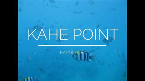 A 1 Electric Hawaii by Snorkeling At Kahe Point Electric Oahu Hawaii 1