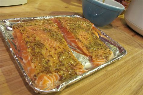 Cook Salmon In Toaster Oven oven toaster cooking salmon in toaster oven