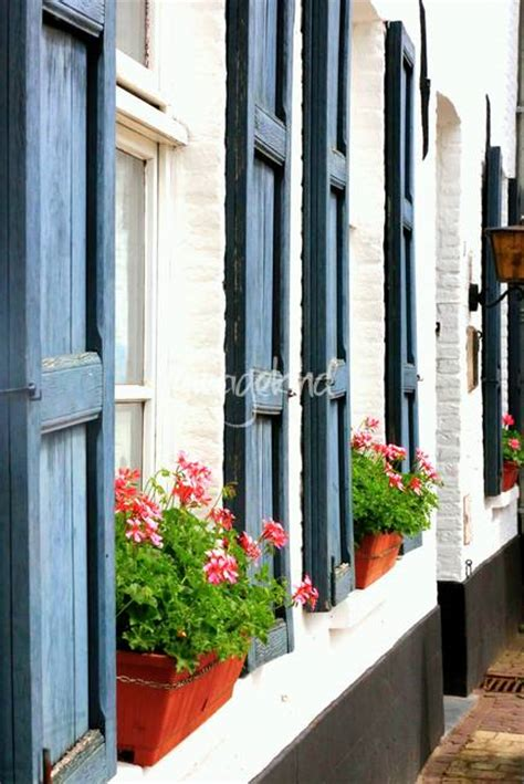 window flower boxes for sale stunning quot window flower boxes quot artwork for sale on