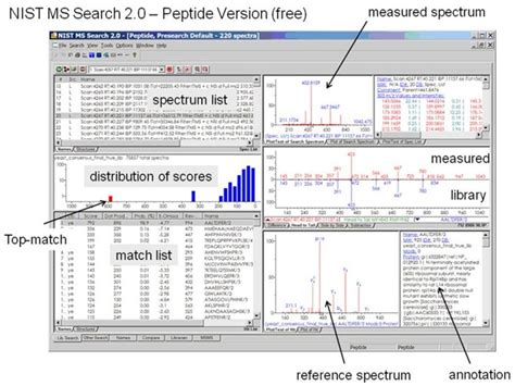Ms Search Monoclonal Antibody Mass Spectral Libraries Nist