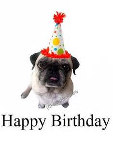 printable pug birthday card flickr photo