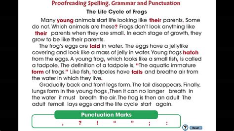 Grammar Essays by Grammar Punctuation And Spelling Lessons Tes Teach