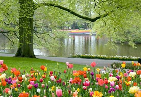 Botanical Gardens In Virginia Meadowlark Botanical Gardens Virginia America The Beautiful Pint