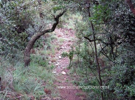 south africa hiking trails in and around pretoria and johannesburg day walks and wildlife hikes books hennops hiking trails visitors information and review