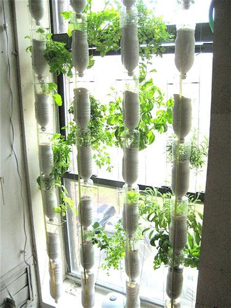 window gardening window garden from 2 liter bottles 2 liter bottle ideas