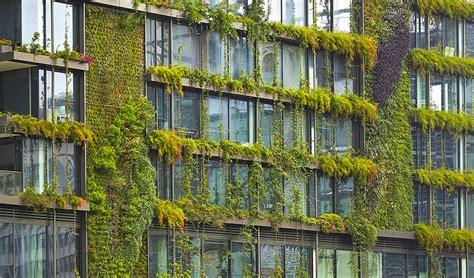 Sydney Vertical Garden Sky Gardens And Green Cities Australian Geographic