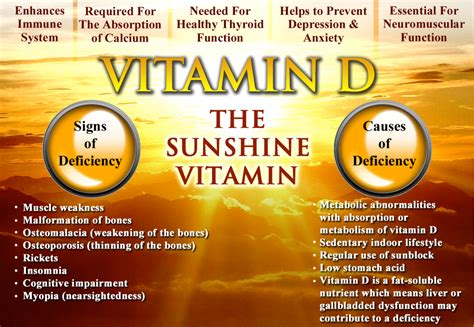 vitamin d sun comprehensive fatty acid and vitamin d panel drjockers com