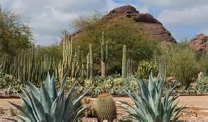 Desert Botanical Garden Membership Desert Botanical Garden Az Arizona Gardens And Deserts