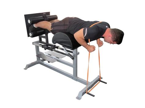 glute ham raise bench force usa glute ham raise developer bench gym fitness