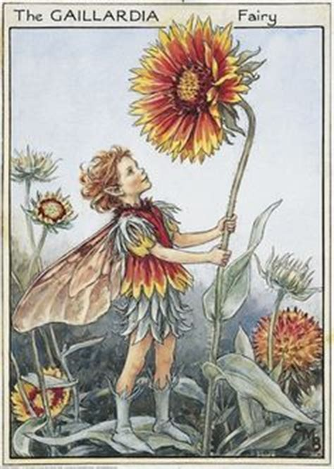 Flower Fairies Of The Garden Flowers Fairies Of The Garden On Cicely Barker Flower Fairies And Fairies